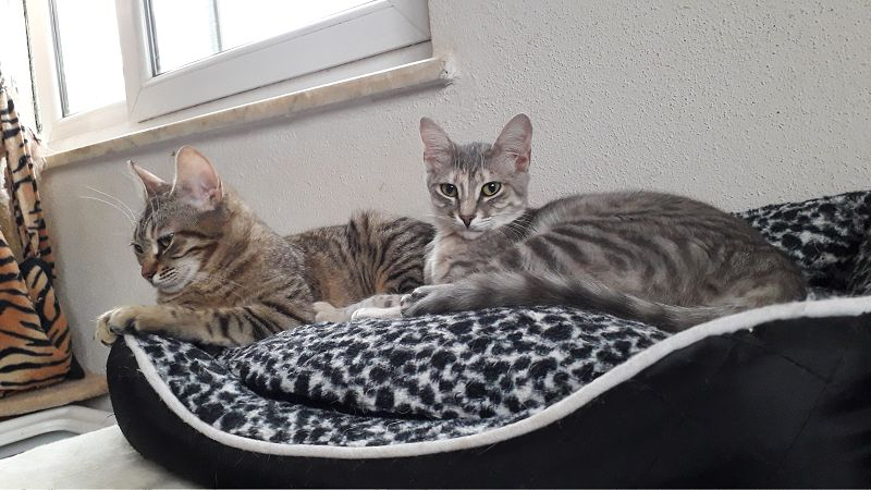 Mimi und Emma
